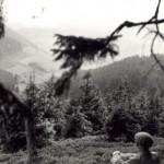 Laasphe 1955